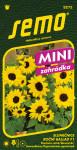 Semo Slunečnice roční - Ballad F1 13s - série Mini